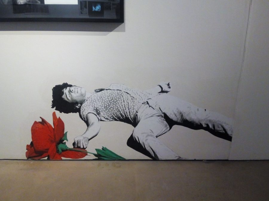el_circulo_del_fotograma_pasolini_roma_museo_san_telmo_muerte_de_pasolini